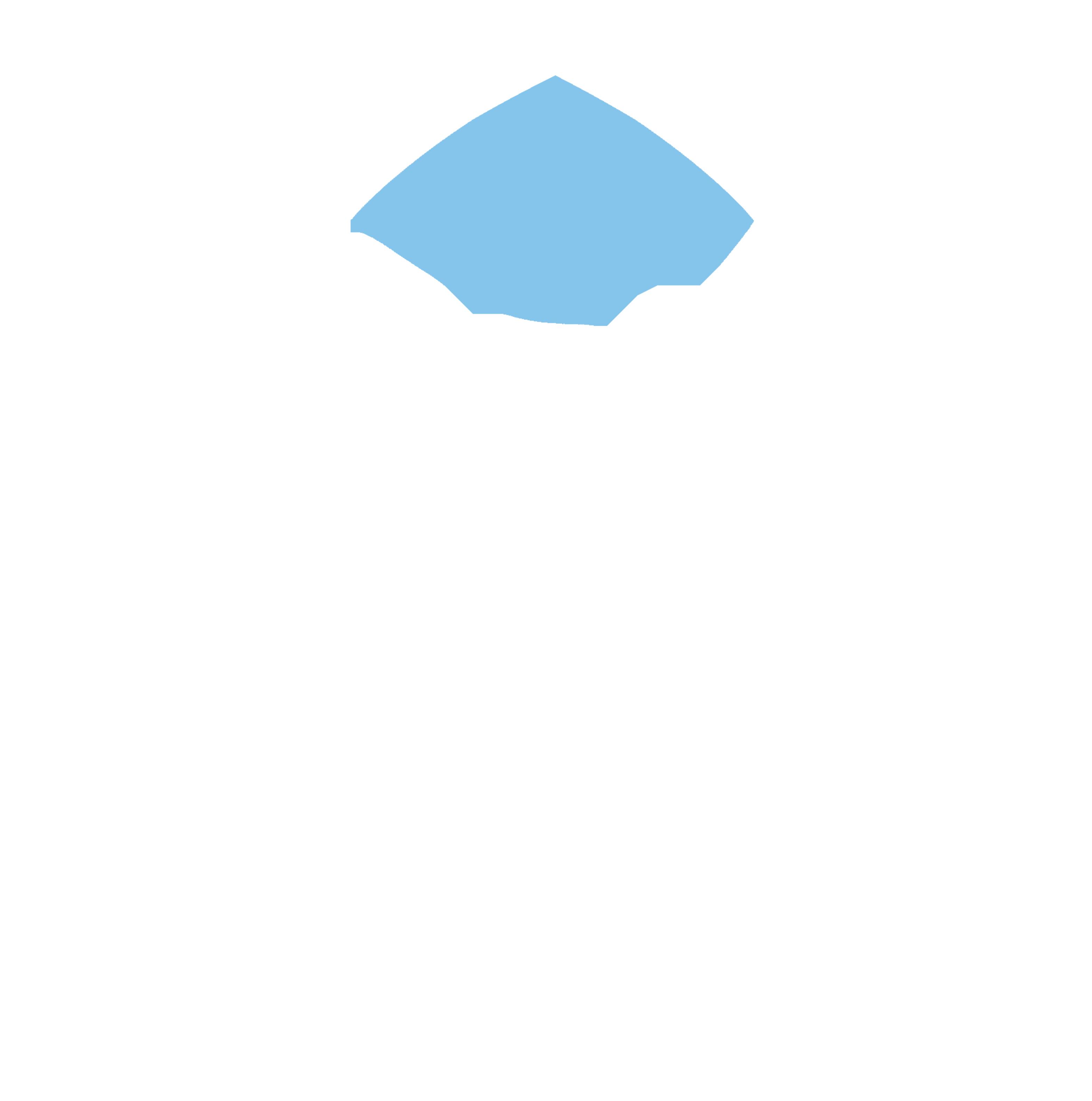 Mission 2030
